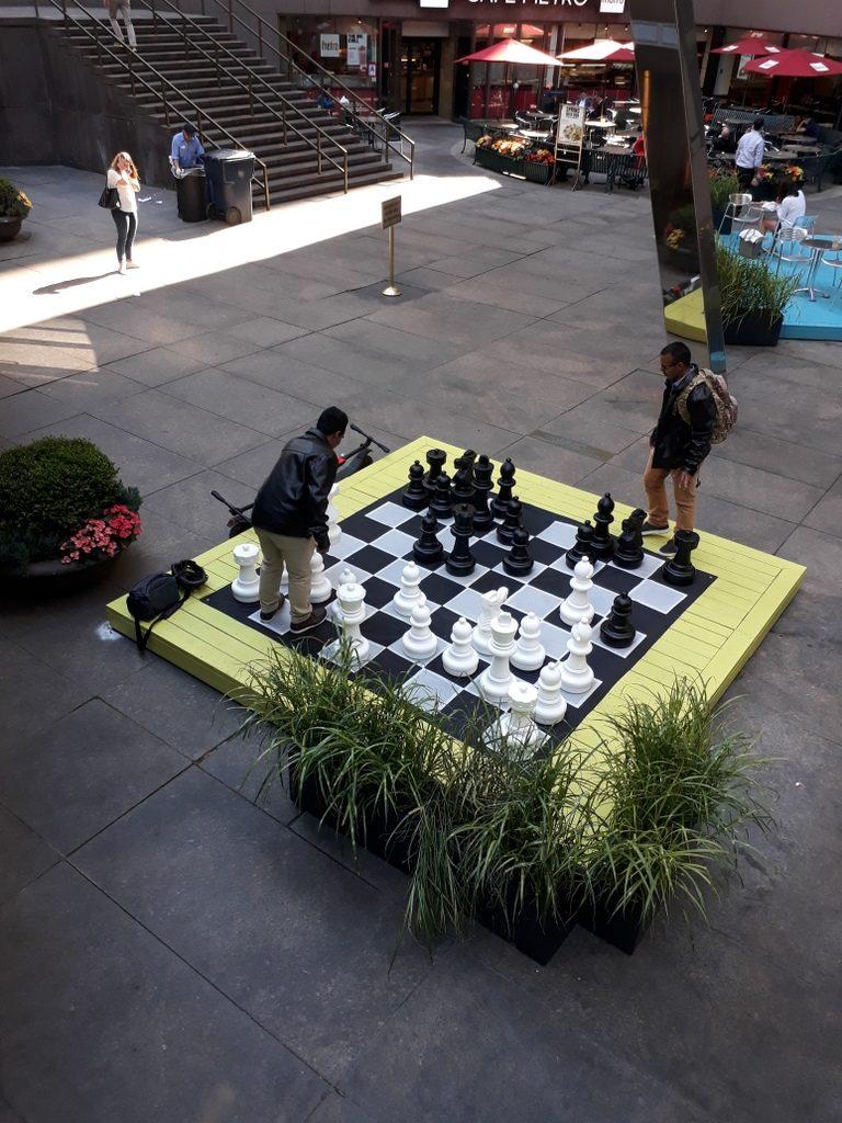 שחמט מול קונדיטורית מגנוליה